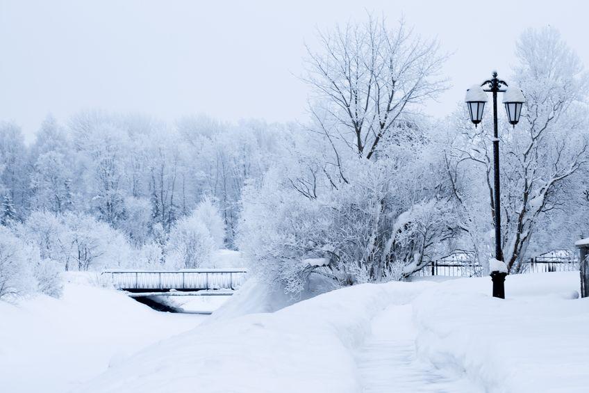 D-08雪景-01-001