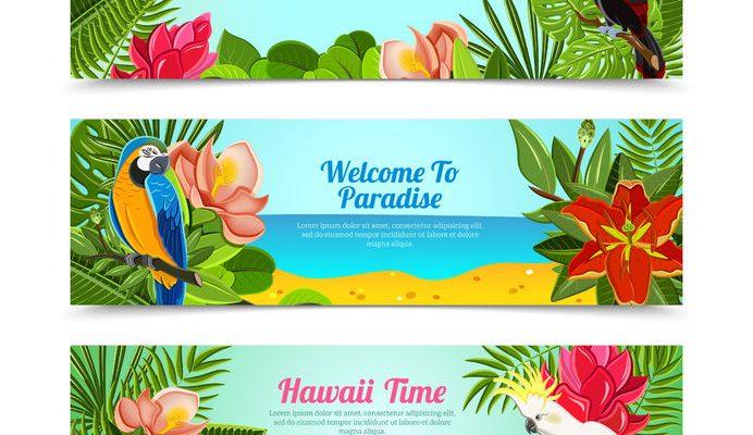 B-08夏威夷-01-005