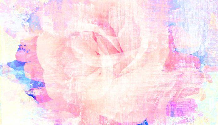 M-05玫瑰花-01-003