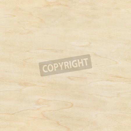 G-03木紋-03-008